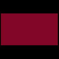 Cliente Red&Service per distribuzione volantini Centro Acustico Italiano